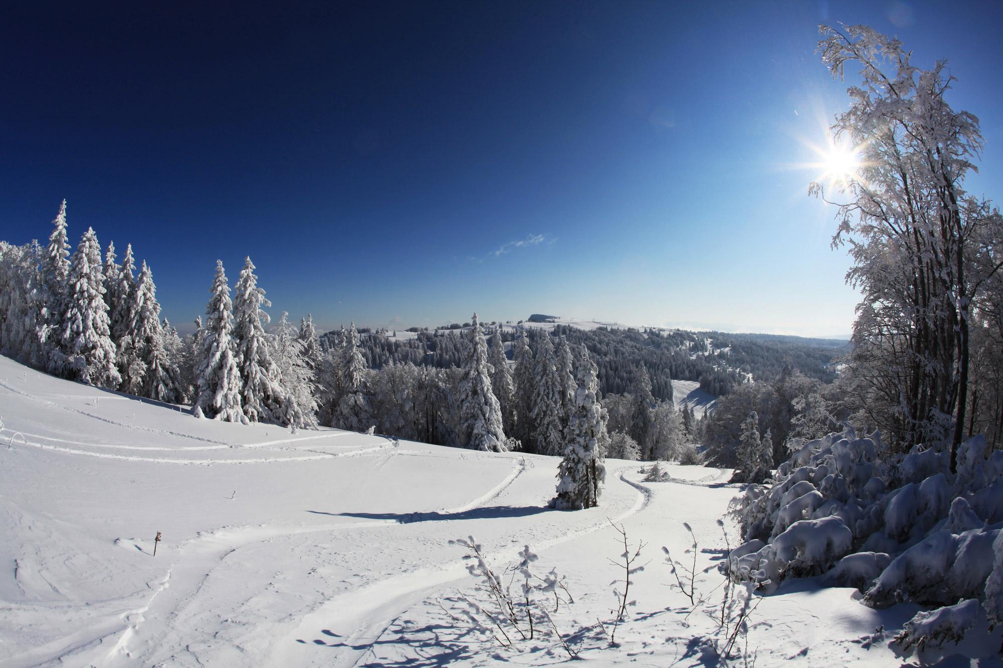 Ski de randonnée autour de l'hôtel restaurant Le Tillau, Jura, Haut Doubs